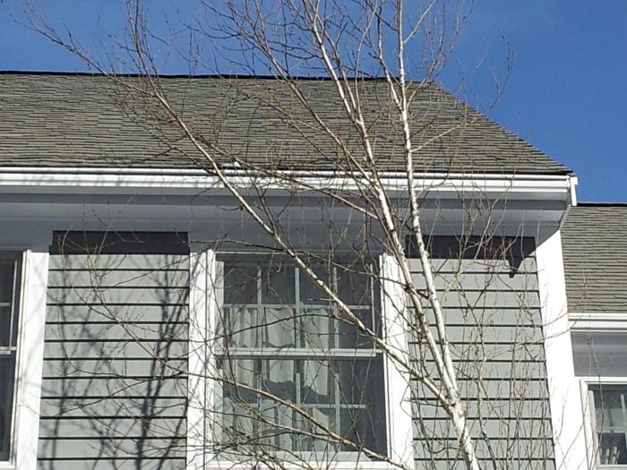 Englert LeafGuard Seamless Aluminum Gutter-Marion, MA
