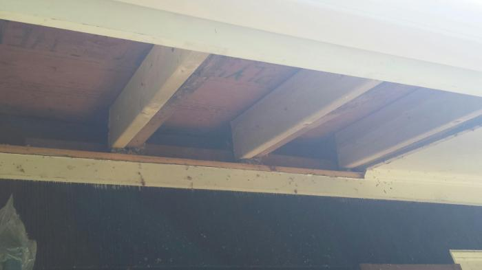 rafter ends repaired