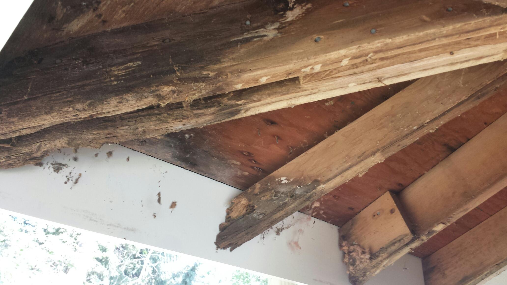 Rotted Rafters And Trim Replacement By Gutter Pro Kingston