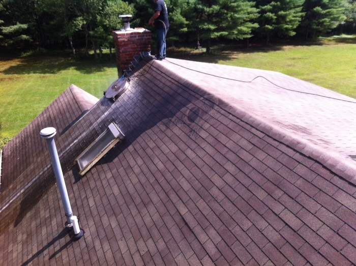 roof cleaning carver