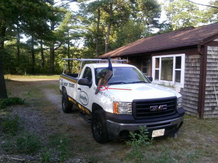 roof cleaning truck